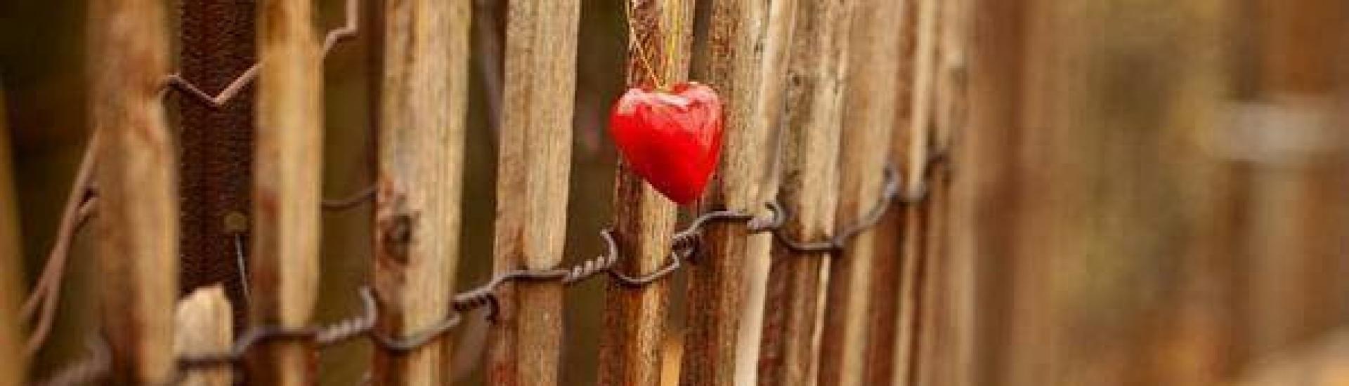 Mīlēt un pieņemt
